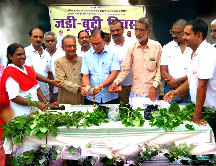 Educationist Dr.Bhupendra Madhepuri inaugurating 'Jadi Buti Diwas' with respectable persons of the town at Rasbihari High School, Madhepura.