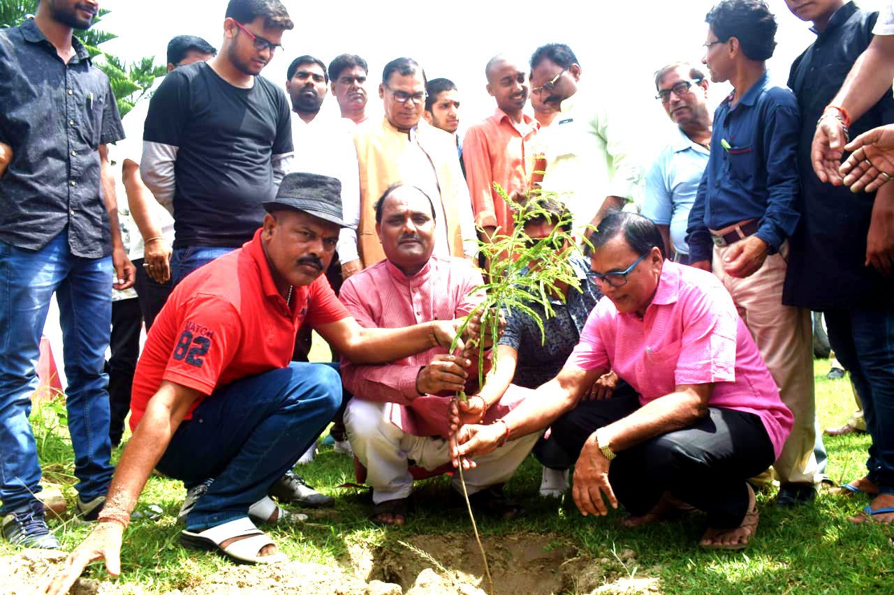 Samajsevi Dr.Bhupendra Madhepuri along with District President Shri Satyendra Kumar Singh, Shri Dhyani Yadav and others engaged in Plantation Work organised by Dainik Jagran at Madhepura College Madhepura.